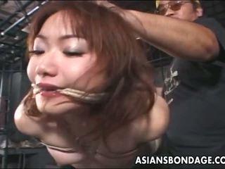 japonais, bdsm, esclavage