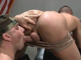 homossexual, avarento, músculo