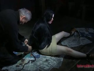 hardcore sex, sex, demütigung