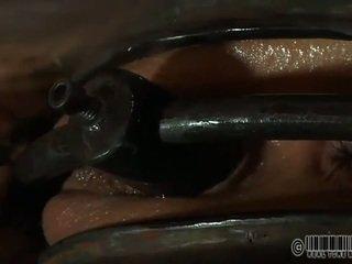 Painful clamping për beautys cica