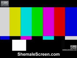 Kuum shemale ekraan film starring sharon, monique, agata
