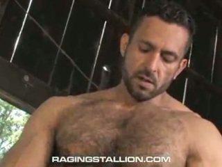 gay stud jerk, gay studs blowjobs, sex gay big man