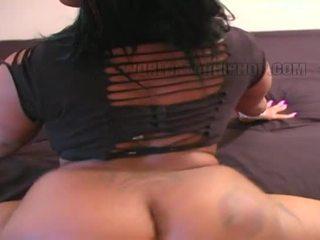 booty, big boobs, bbw
