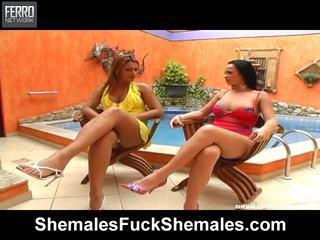 Hot Shemales Fuck Shemales Scene Starring Carla, Paulette, Daiane