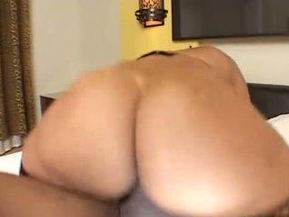 Groot bips brazil